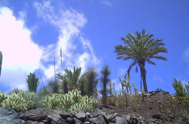 Fuerteventura Natur