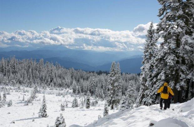 Tirol Skigebiet Fieberbrunn