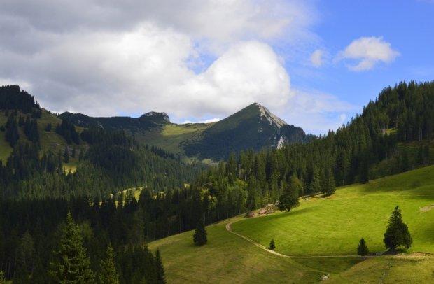 Tirol Berglandschaft