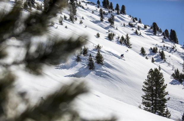 Tirol Skigebiet Scheffau