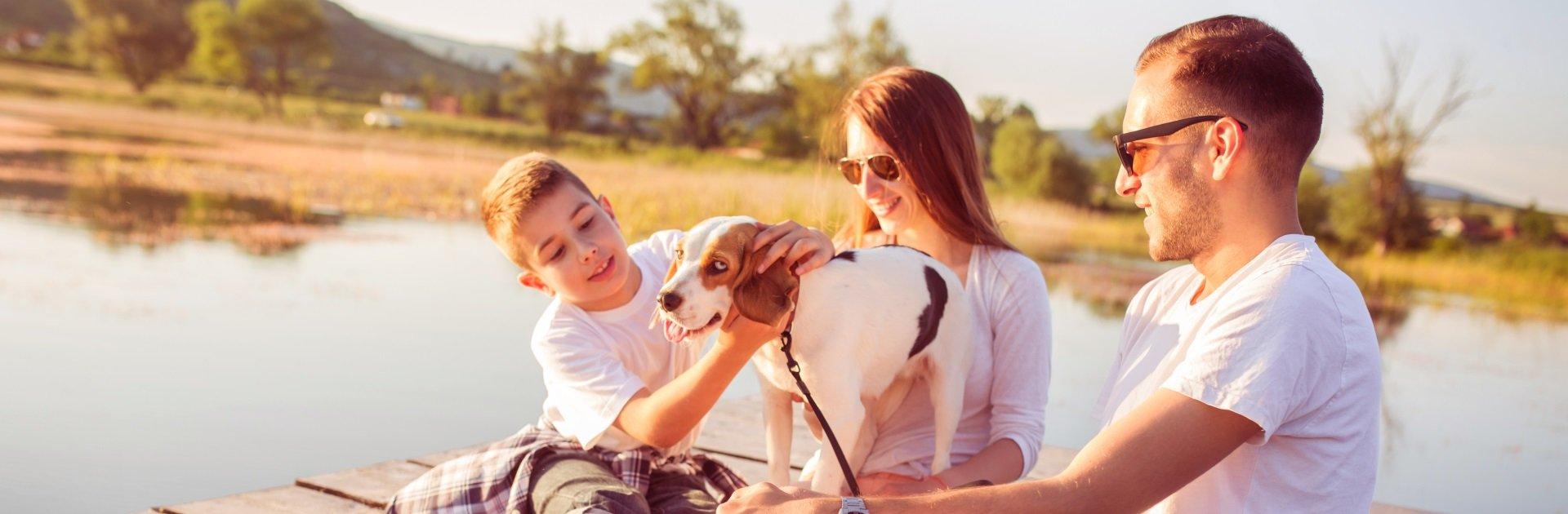 Ferienunterkünfte für Urlaub mit Hund