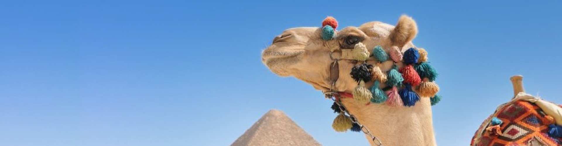 Familienhotels Ägypten