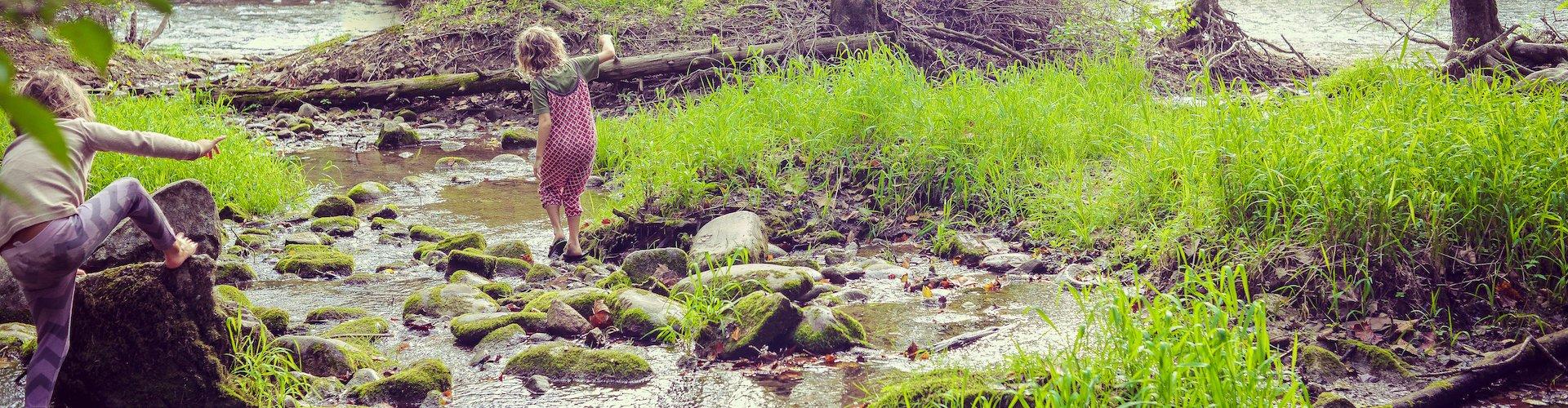 Ausflugsziel Wildnis Camp am Falkenstein