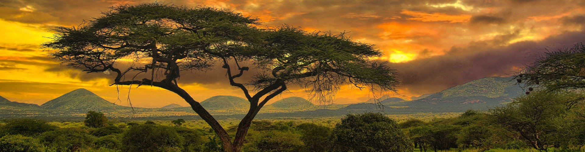Familienurlaub in Kenia