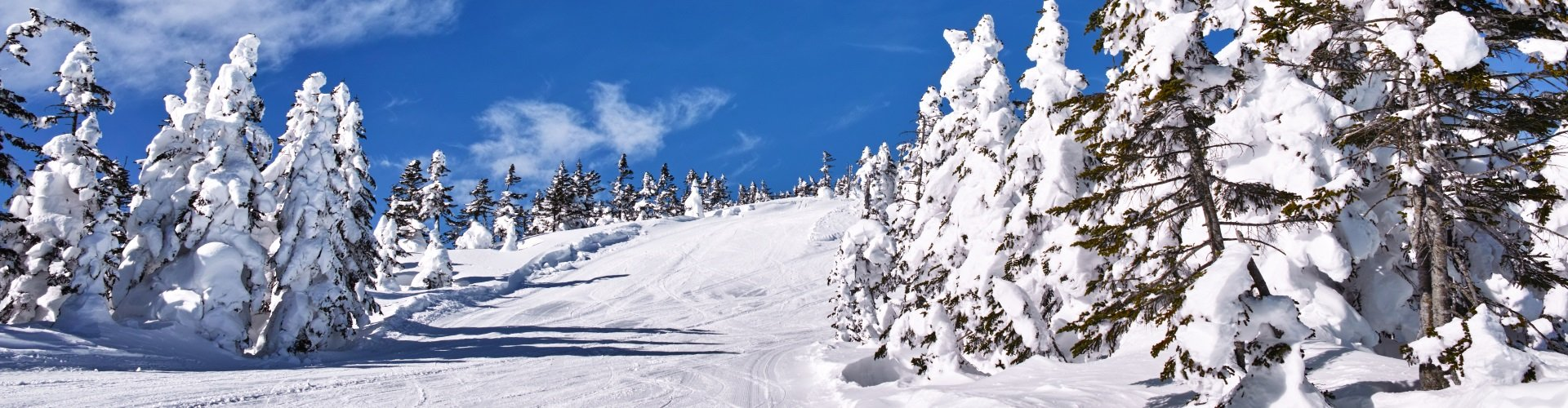 Skigebiet Grafenau