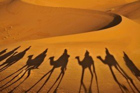 Familienurlaub in Afrika