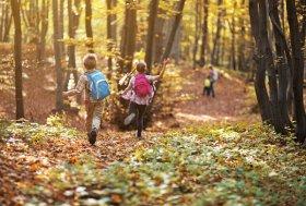 Goldene Jahreszeit Herbstferien mit der Familie