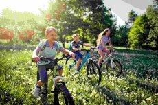 Familienurlaub im Ferienpark Natur