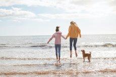 Familienurlaub mit Hund am Meer