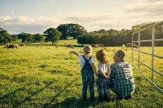 Familienurlaub auf dem Bauernhof Weide