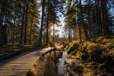 Kurzurlaub Deutschland Harz