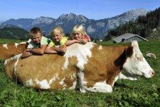 Familienaktivwoche Pinzgau