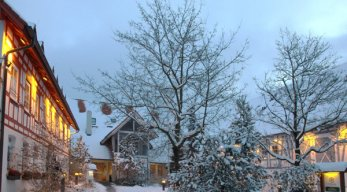 alte muehle am ried winter
