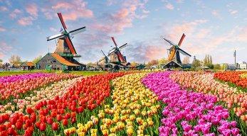 Familienurlaub in den Niederlanden